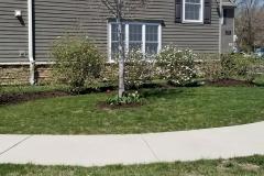 Spring-Woodstown4